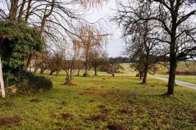 Foto 5 RE/MAX Family - Idyllisch gelegene Landwirtschaft (ca. 8,3 ha) im nördlichen Salzburger Land