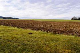 Foto 6 RE/MAX Family - Idyllisch gelegene Landwirtschaft (ca. 8,3 ha) im nördlichen Salzburger Land
