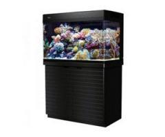 Red Sea MAX 250 Aquarium gebraucht (komplett und mit Unterschrank) zu verkaufen