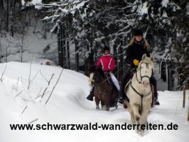 Foto 3 Reiten, Reitferien im Schwarzwald Todtmoos Au