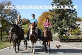 Foto 5 Reiten, Reitferien im Schwarzwald Todtmoos Au