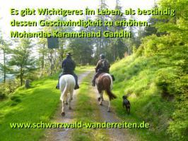 Reiten, Reitferien, Wanderreiten im Schwarzwald Todtmoos Au