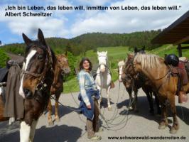 Foto 2 Reiten, Reitferien, Wanderreiten im Schwarzwald Todtmoos Au