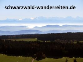 Foto 3 Reiten, Reitferien, Wanderreiten im Schwarzwald Todtmoos Au