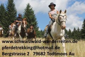 Reiten, Reitferien, Wanderreiten, Freizeitreiten ab Todtmoos Au schwarzwald-wanderreiten