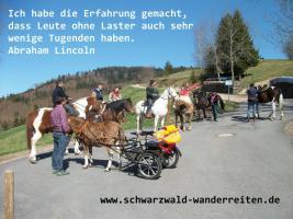 Foto 6 Reiten - Wanderreiten für Erwachsene Todtmoos Au Südschwarzwald
