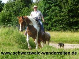 Foto 9 Reiten - Wanderreiten für Erwachsene Todtmoos Au Südschwarzwald