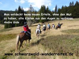 Reiten, Wanderreiten, Reitlager, Tagesritte, Reitferien, Pferdetrekking rund um den Feldberg