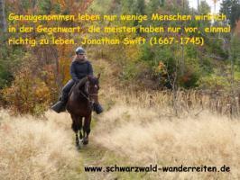 Foto 8 Reiten, Wanderreiten, Reitlager, Tagesritte, Reitferien, Pferdetrekking rund um den Feldberg