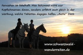Foto 9 Reiten, Wanderreiten, Reitlager, Tagesritte, Reitferien, Pferdetrekking rund um den Feldberg