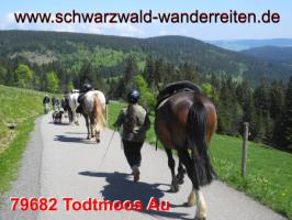 Foto 2 Reitferien für Jugendliche - schwarzwald-wanderreiten - Todtmoos Au