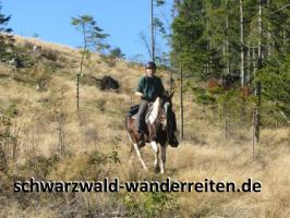 Foto 5 Reitferien, Reiten ab Todtmoos Au, schwarzwald-wanderreiten