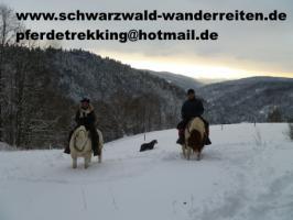 Foto 4 Reitferien, Wanderreiten im Schwarzwald Todtmoos Au