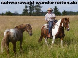 Reitferien, Wanderreiten im Schwarzwald - nicht nur für Frauen