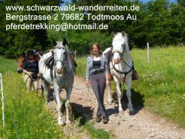 Foto 4 Reitferien, Wanderreiten nicht nur für Frauen