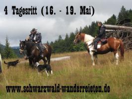 Foto 2 Reitferien, Wanderreiten, Entschleunigen im Schwarzwald Todtmoos Au