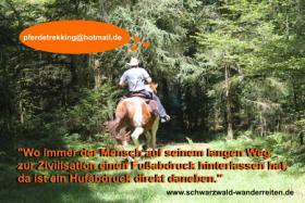 Reitferien, Wanderreiten, Entschleunigen im Schwarzwald Todtmoos Au