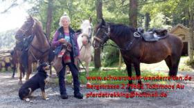 Foto 4 Reitferien, Wanderreiten, Entschleunigen im Schwarzwald Todtmoos Au