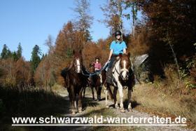 Foto 19 Reitferien, Wanderreiten, Entschleunigen im Schwarzwald Todtmoos Au