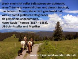 Foto 23 Reitferien, Wanderreiten, Entschleunigen im Schwarzwald Todtmoos Au