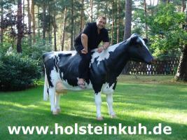 Foto 3 Reklame - Deko Kuh oder Deko Pferd -- oder oder ...