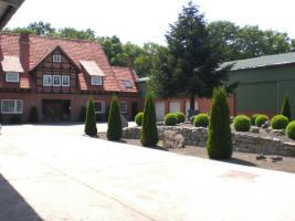 Foto 2 Repräsentativer Familiensitz/EFH in idyllischer ländlicher Lage zu vermieten, wahlweise m.  Stahlbauhallen+Nebengebäuden