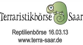 Reptilienbörse 16.03.2013