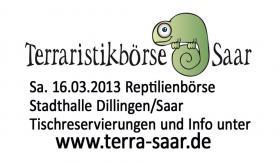 Reptilienbörse 16.03.2013 Tische jetzt noch reservieren