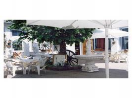Restaurant samt Anwesen sehr zentral gelegen.
