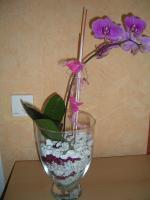 Foto 2 Restposten von Dekosteinen für Pflanzen