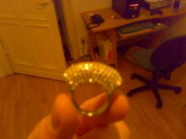 Ricarda M Damen Ohrringe und Ring
