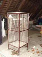 Foto 4 Riesengroßer Käfig mit Rollen + 2 Wellensittiche