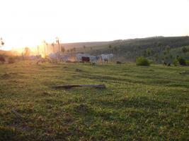 Foto 2 Rinderfarm in Paraguay Südamerika zu verkaufen