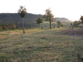 Foto 4 Rinderfarm in Paraguay Südamerika zu verkaufen