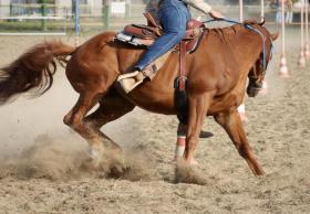 River Ranch Florida zu verkaufen