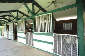 Foto 4 River Ranch Florida zu verkaufen