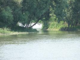 Foto 2 Romantisches kleines Grundstück in Ungarn