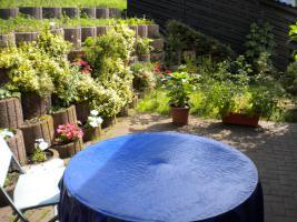 Foto 3 Ruhige 3 ZKDB Abstellraum + Terrasse + Garage