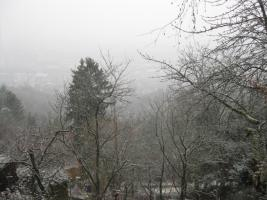 Foto 3 Ruhiges Gartengrundstück auf der Wangener Höhe
