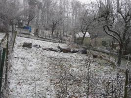Foto 5 Ruhiges Gartengrundstück auf der Wangener Höhe