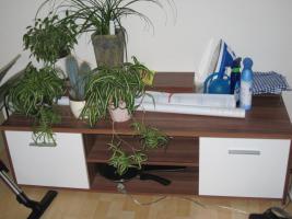 Foto 13 SCHNÄPPCHEN! Ganze Möbelgarnitur nur 550 Euro VHB, SEHR gutes Angebot!