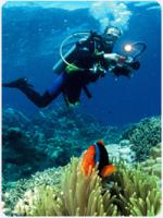 Foto 2 SSI Open Water Diver - Anfänger Tauchkurs