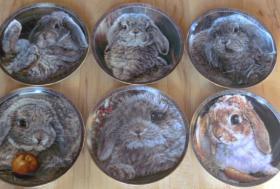 Foto 2 Sammelteller Bradex *Neuwertig* Ägypten, Marienbilder, Jesu, Katzen, Vögel, Bunny Tales, Ikonen