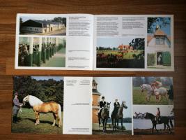 Foto 4 Sammlerstücke 2 Hefte ''PFERDE aus der DDR'' - echt DDR