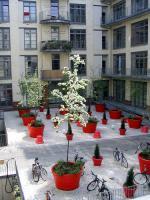 Foto 3 Sanierte 3-Zi-Stuck-Whg in Jugendstilhaus, Ufernähe