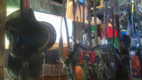 Sattel, Geschirr + Kutsche ( Anhänger ) für Pony´s