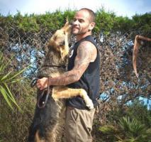 Foto 3 Schäferhund Mix TURKO sucht ein Zuhause oder PS