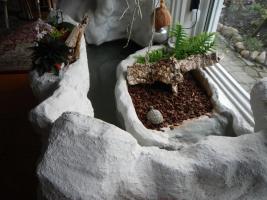 Foto 4 Schildkröte mit terarium