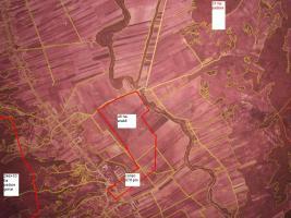 Foto 3 Schloss mit ca.30 zimmer und 286Ha Eichenwald, zu verkaufen, ,