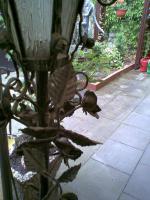 Schmiedeeisen Laterne zu verkaufen